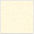 Soft White Superfine Eggshell Eggshell