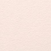 Blush  Letterpress Neenah Cotton 100% Cotton